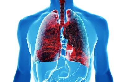 Menyerap Kimia Tanpa Gejala