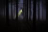 Candra P. Pusponegoro - Grand Master Bekam & Ruqyah Indonesia sedang menerapi pasien di klinik Bekam Batam Ruqyah Batam Bengkel Manusia Indonesia beberapa waktu lalu