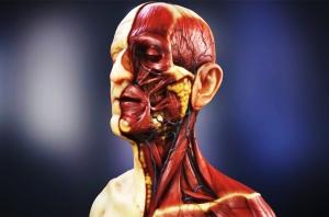 Ilustrasi sakit hipertensi